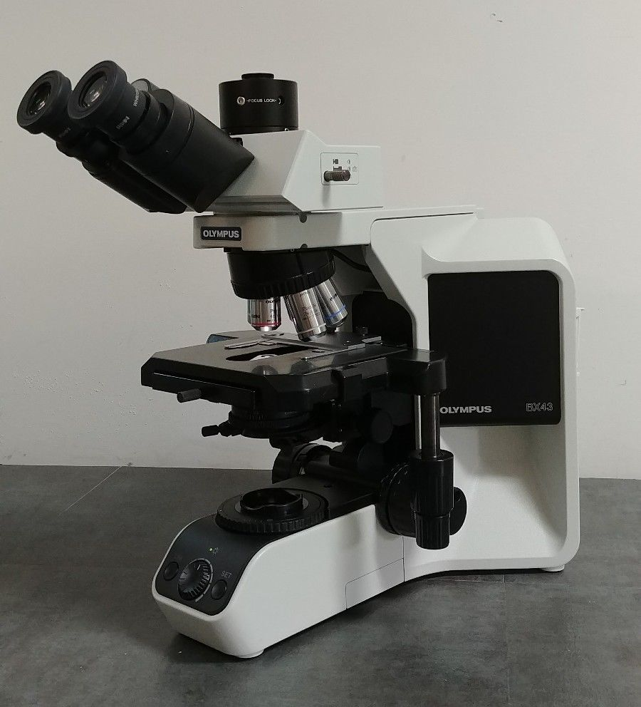Olympus Microscope Bx43 With 2x Objective And Trinocular