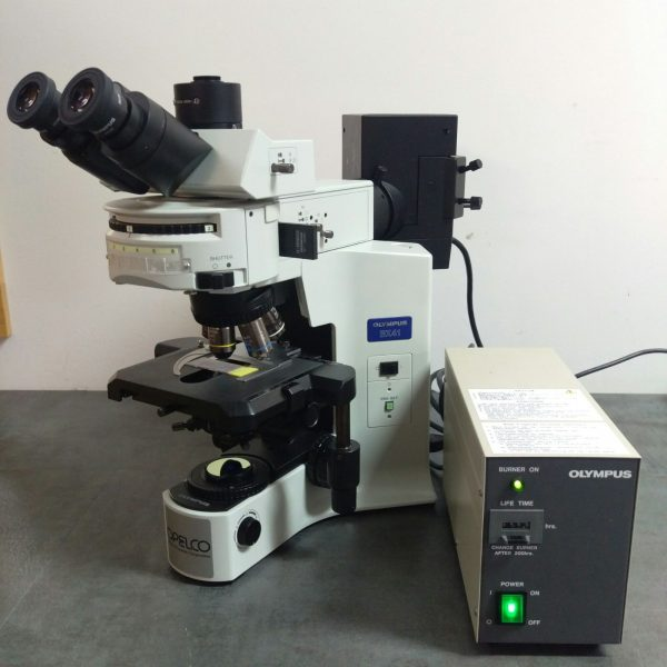Olympus Microscope Bx41 With Fluorescence Nc Sc Va Md