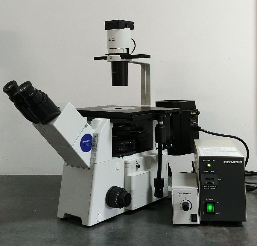 Olympus Microscope Ix51 With Fluorescence And Phase