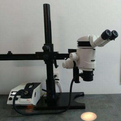 Leica MZ16