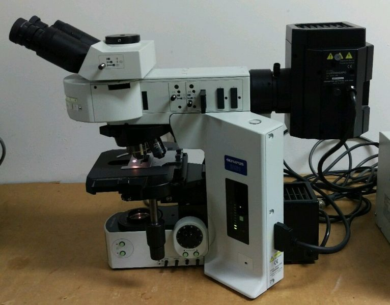 Olympus Microscope Bx61 With Fluorescence And Motorized