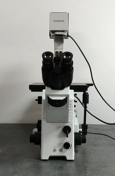 Olympus Microscope Ix71 With Fluorescence And Phase