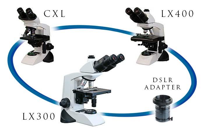 Labomed Microscopes
